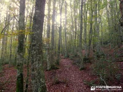 Parque Natural Saja-Besaya y Valderredible (Monte Hijedo) caminos y senderos viajes y rutas senderos